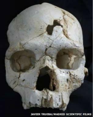 насилие, череп 450 лет, ученые, находка древнего, раскопки, человек насилие