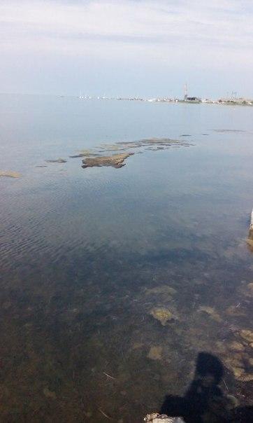 скадовск, херсонская область, море, отзывы белоросских туристов