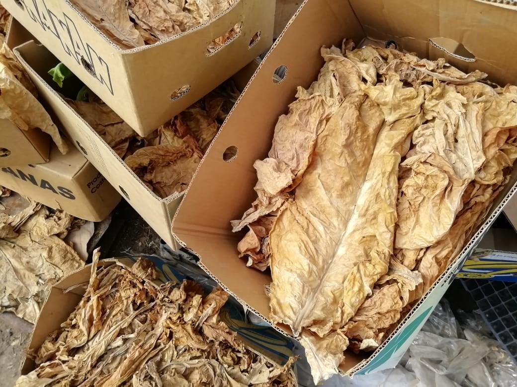 В Херсонской области остановлено нелегальное производство табачного сырья