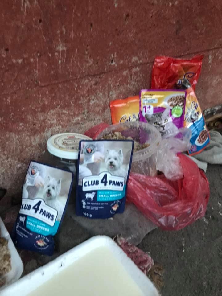 Херсонские школьники помогли бездомным животным