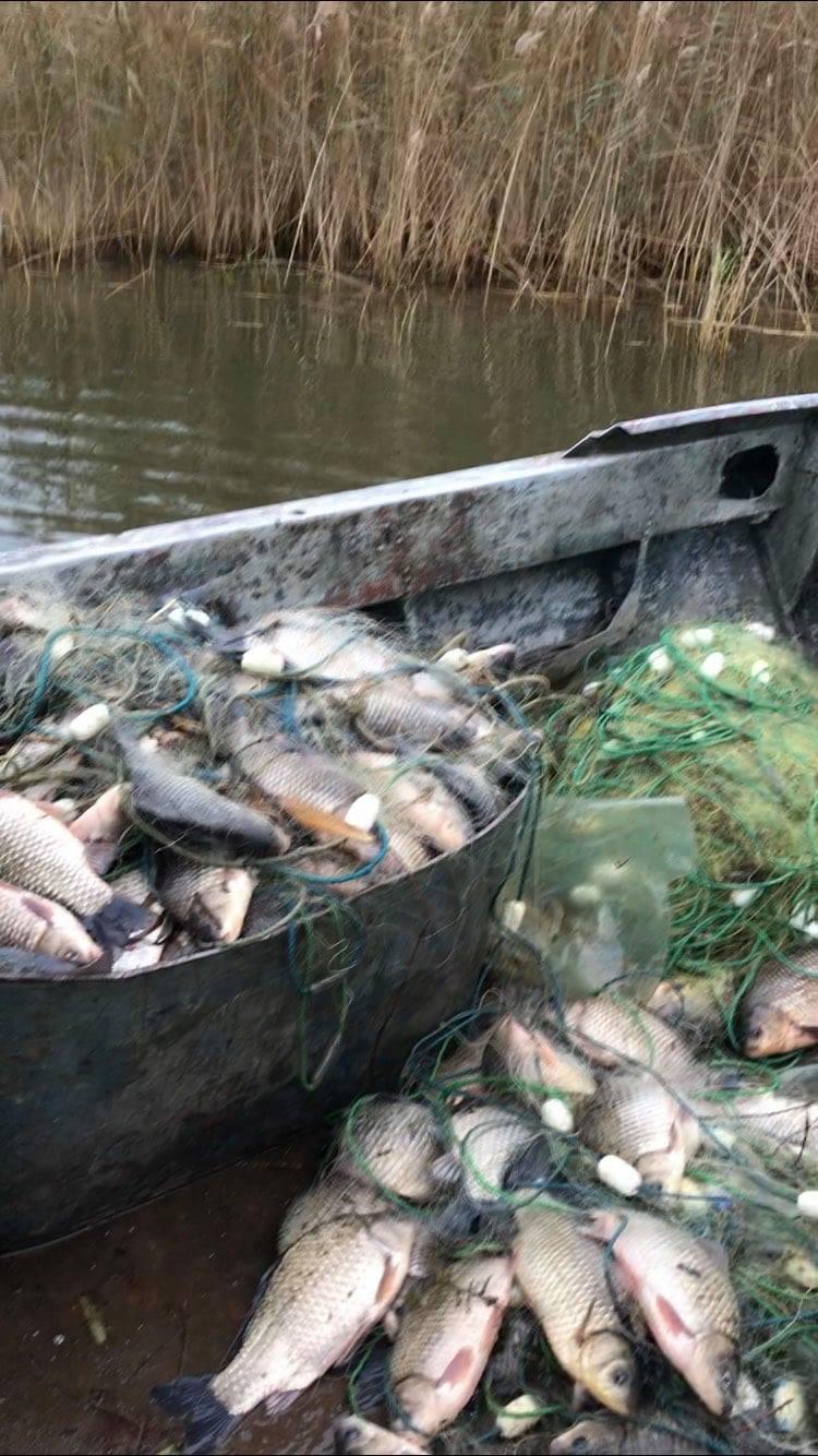 Ущерб почти на 20 тысяч гривен: на Херсонщине обнаружили браконьеров