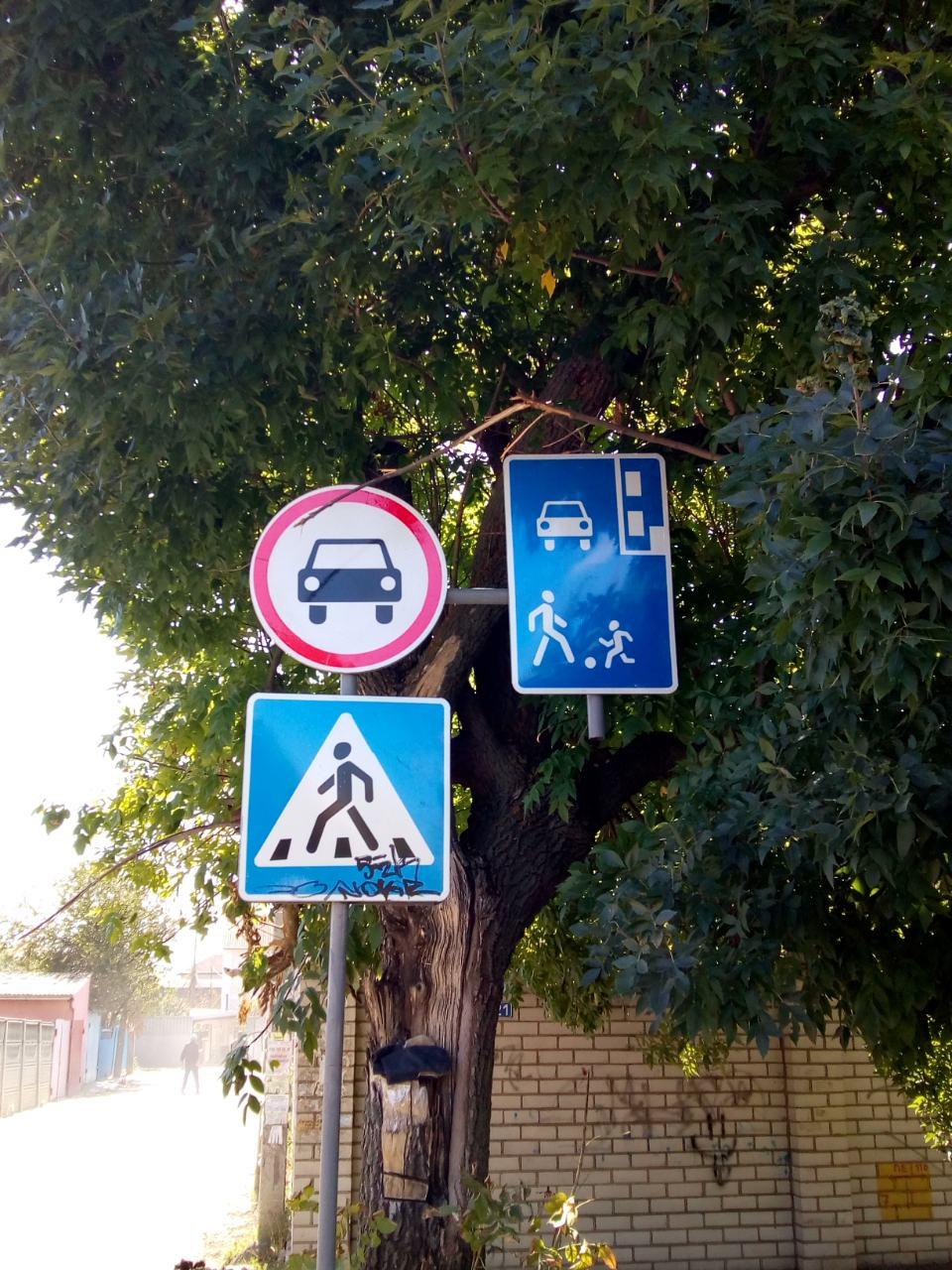 В Херсоне в Гиропарке запретили проезд к дачному причалу