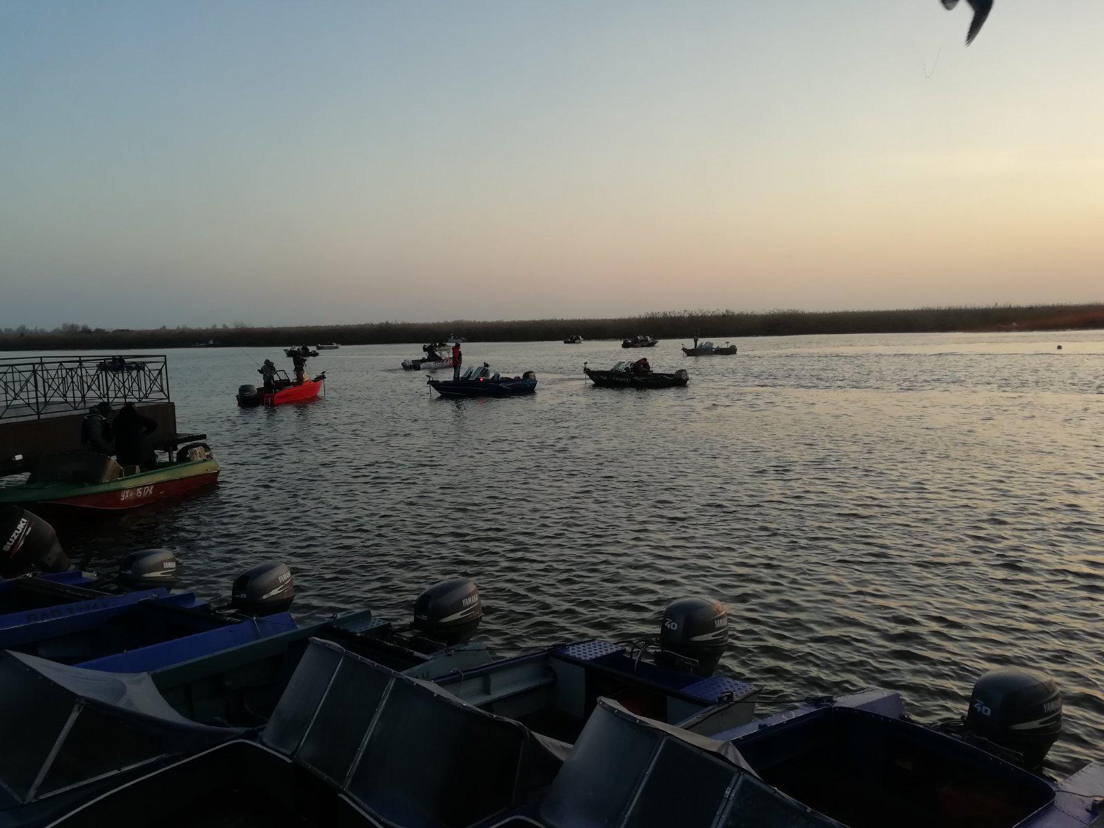 На Херсонщине охотились на крупных водных хищников