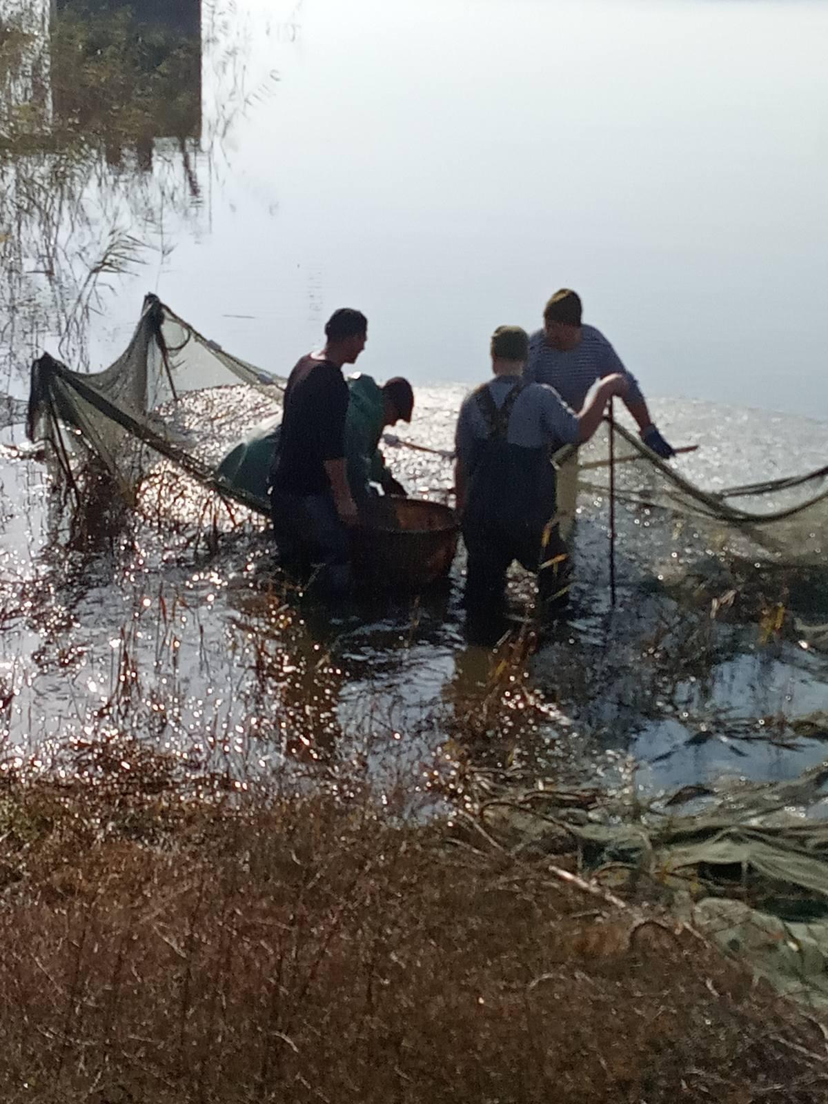 На Херсонщине выпустили в воду 673659 рыб