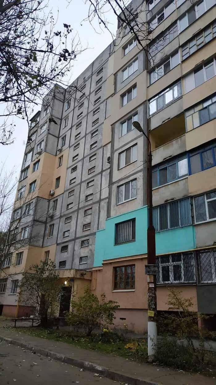 В Херсоне защитники животных спасли колонию летучих мышей, занесенных в Красную книгу Украины, которых выбросили на улицу