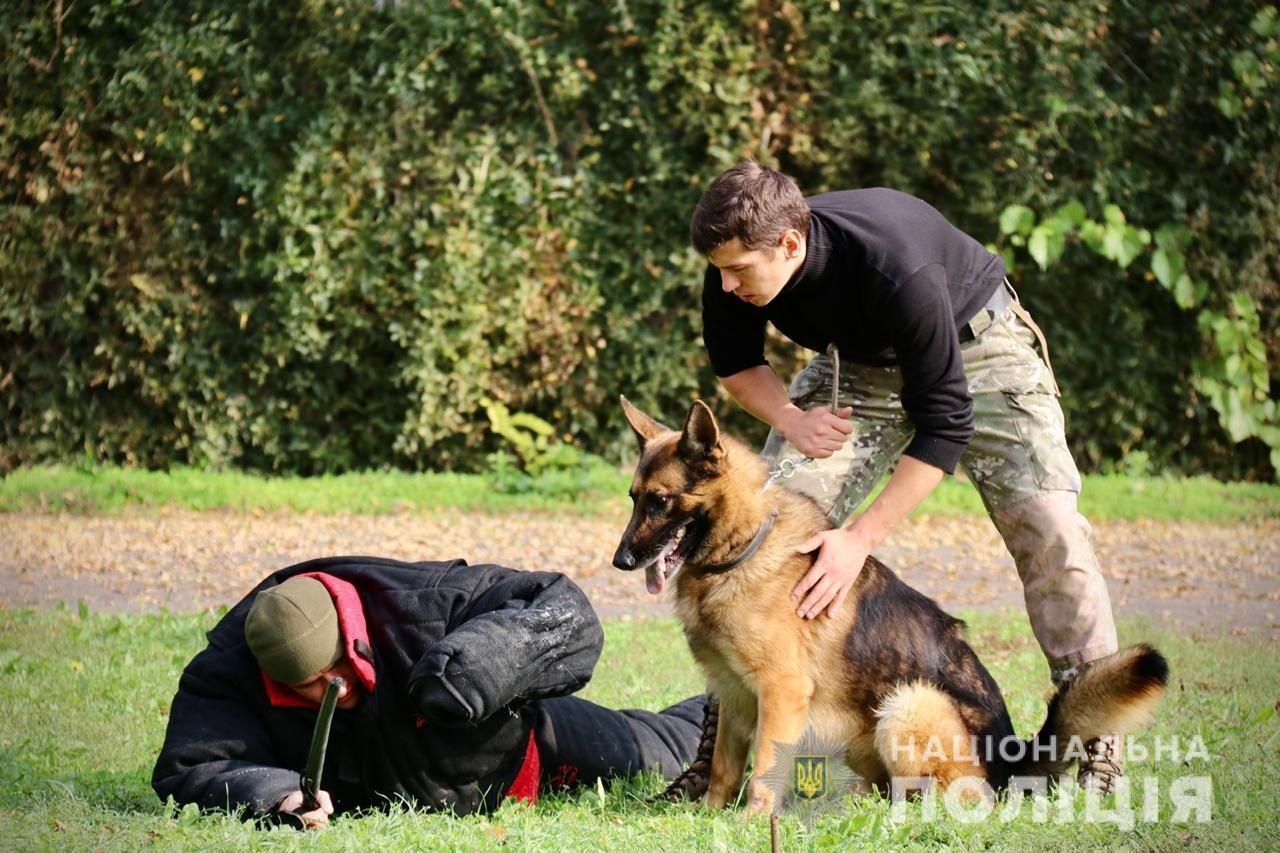 В кинологическом центре полиции Херсонщины проходят тренировки новых четвероногих следопытов