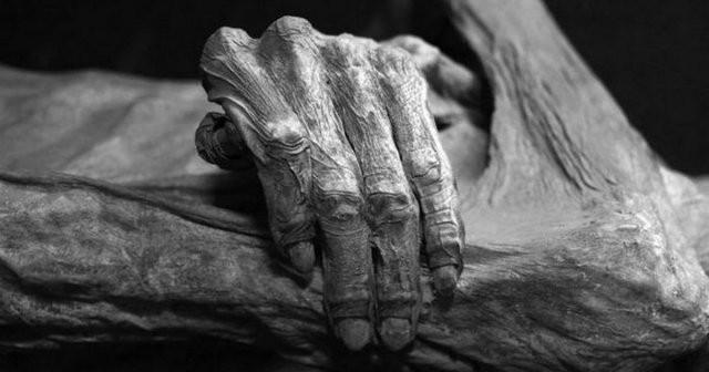 Нa Xepcoнщинe в лecу нaшли мумию