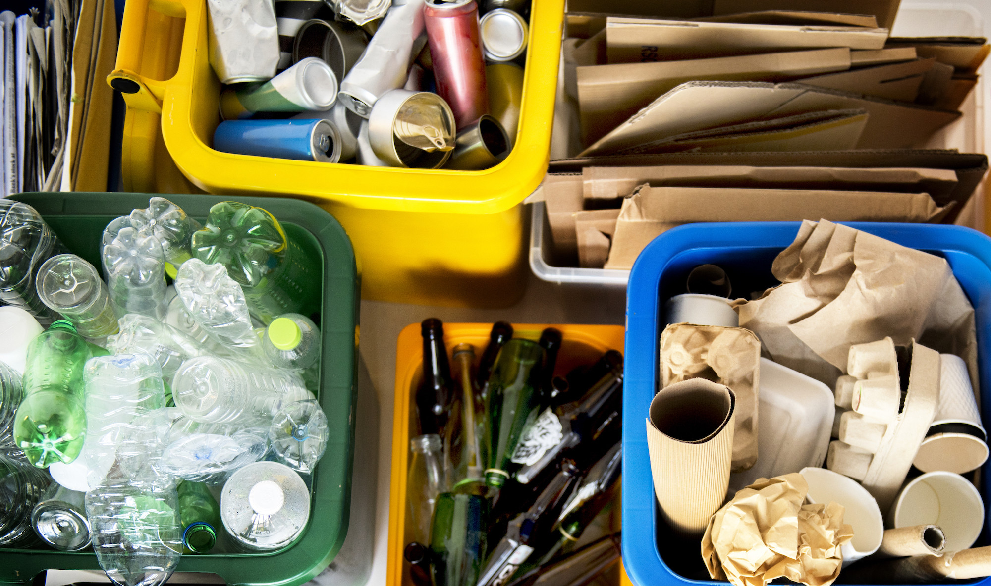 Экоактивисты призывают херсонцев присоединиться к отправке вторсырья на переработку