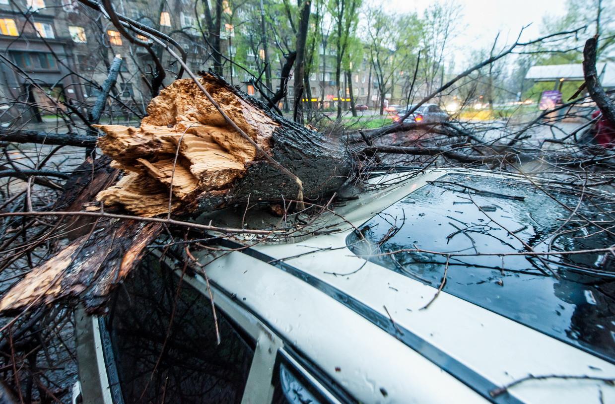"""""""Прелести"""" сегодняшнего дождливого дня в Херсоне: упавшие деревья, разбитые машины, новые """"бассейны"""""""