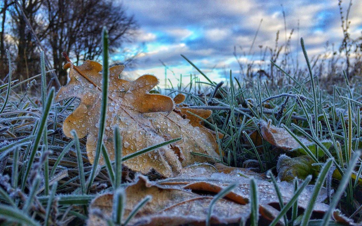 Похолодание, ночные заморозки и осадки: в Украину идет новый циклон
