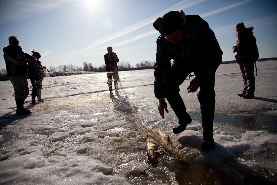 На Херсонщине браконьеров не сдерживают даже лютые морозы: рыбаки нанесли ущерб почти на 6 тысяч гривен