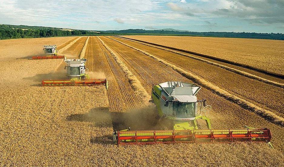 Китайцы собираются инвестировать в сельское хозяйство Херсонщины