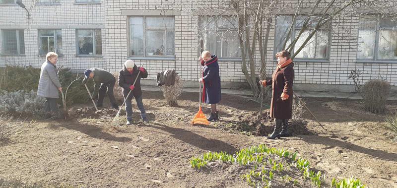 280 молодых деревьев высадили в Херсонской области